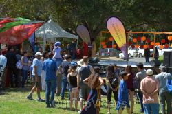 Dilli Haat Food and Folk Festival, Cupertino, CA, USA - Picture 48