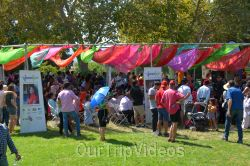 Dilli Haat Food and Folk Festival, Cupertino, CA, USA - Picture 49