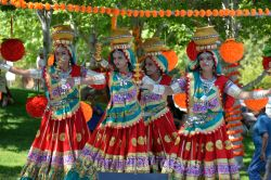 Dilli Haat Food and Folk Festival, Cupertino, CA, USA - Online News Paper RSS -  views