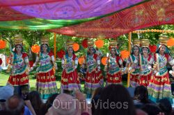 Dilli Haat Food and Folk Festival, Cupertino, CA, USA - Picture 56