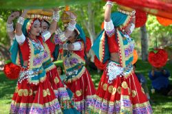 Dilli Haat Food and Folk Festival, Cupertino, CA, USA - Picture 59