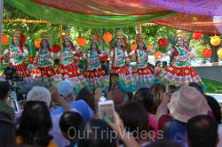 Dilli Haat Food and Folk Festival, Cupertino, CA, USA - Picture 60