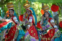 Dilli Haat Food and Folk Festival, Cupertino, CA, USA - Picture 61