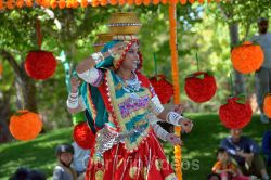 Dilli Haat Food and Folk Festival, Cupertino, CA, USA - Picture 64