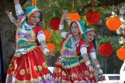 Dilli Haat Food and Folk Festival, Cupertino, CA, USA - Picture 68