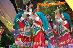 Dilli Haat Food and Folk Festival, Cupertino, CA, USA - Picture 71