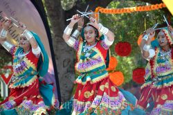 Dilli Haat Food and Folk Festival, Cupertino, CA, USA - Picture 72