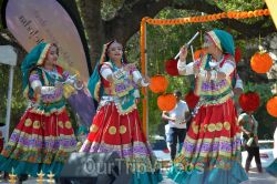 Dilli Haat Food and Folk Festival, Cupertino, CA, USA - Picture 77