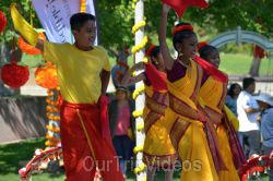 Dilli Haat Food and Folk Festival, Cupertino, CA, USA - Picture 79