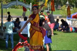 Dilli Haat Food and Folk Festival, Cupertino, CA, USA - Picture 82