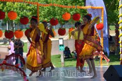Dilli Haat Food and Folk Festival, Cupertino, CA, USA - Picture 83