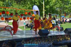 Dilli Haat Food and Folk Festival, Cupertino, CA, USA - Picture 86