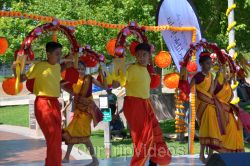 Dilli Haat Food and Folk Festival, Cupertino, CA, USA - Picture 87