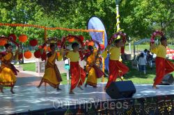 Dilli Haat Food and Folk Festival, Cupertino, CA, USA - Picture 91