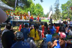 Dilli Haat Food and Folk Festival, Cupertino, CA, USA - Picture 93