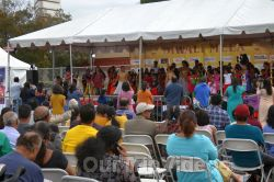FOG Diwali Mela - Festival of Lights, Newark, CA, USA - Picture 19
