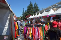 FOG India Day Fair and Mela, Fremont, CA, USA - Picture 46