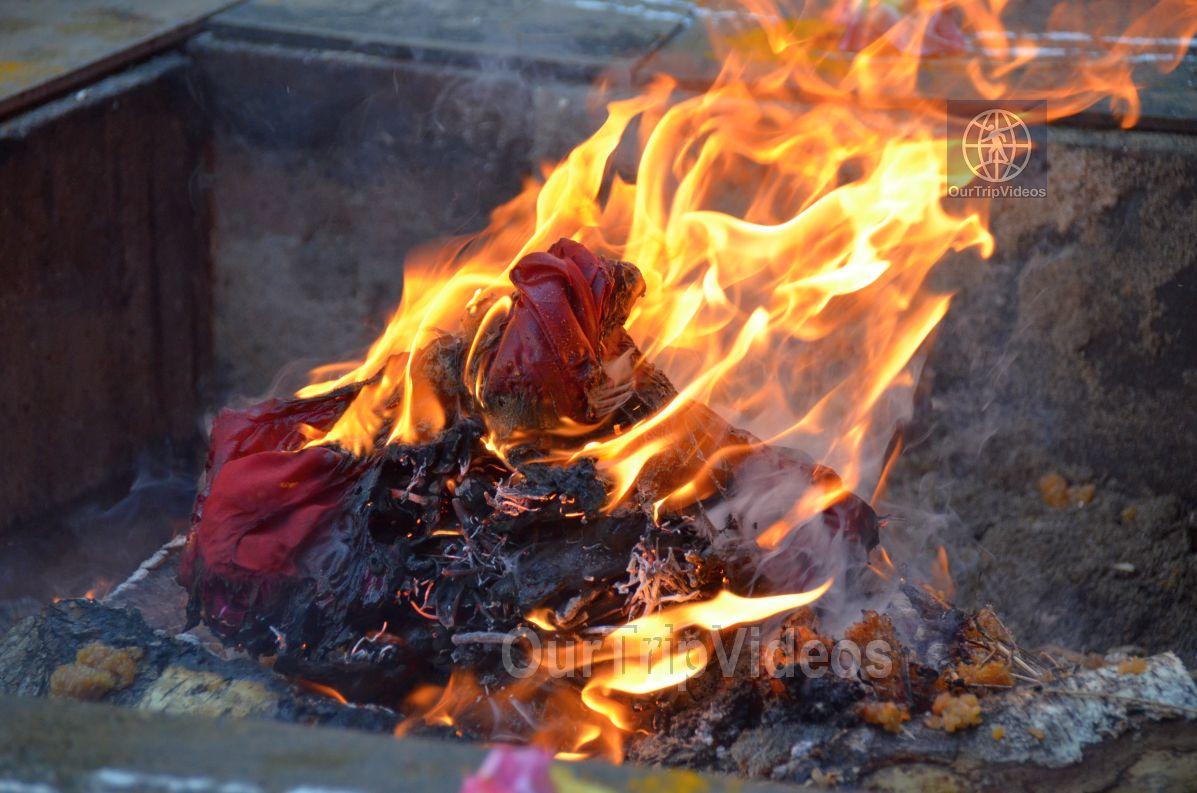 Varshaabhishekam - Lalitha Sahasranama Lakshaarachana, San Jose, CA, USA - Picture 8 of 25