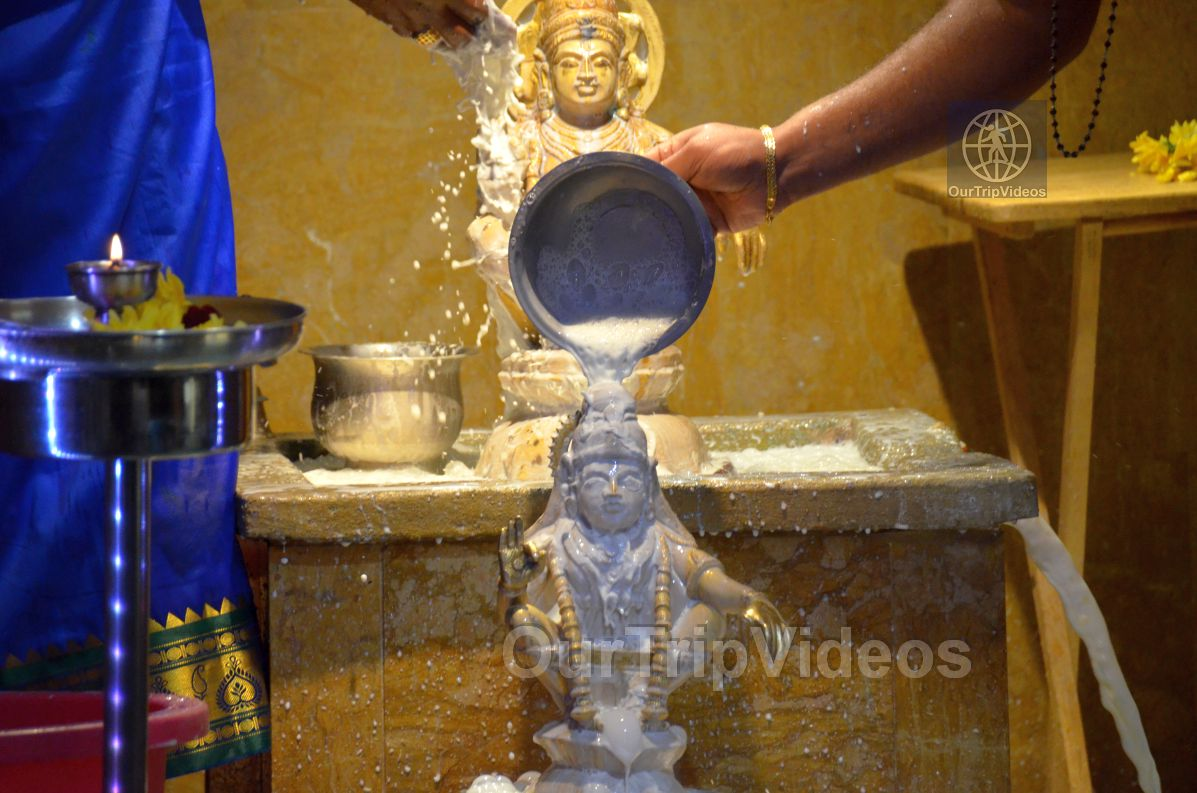 Grand start to Mandalam by Ayyappa Samaaj, Fremont, CA , USA - Picture 17 of 25