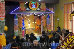 Grand start to Mandalam by Ayyappa Samaaj, Fremont, CA , USA - Picture 2