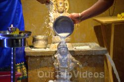 Grand start to Mandalam by Ayyappa Samaaj, Fremont, CA , USA - Picture 17
