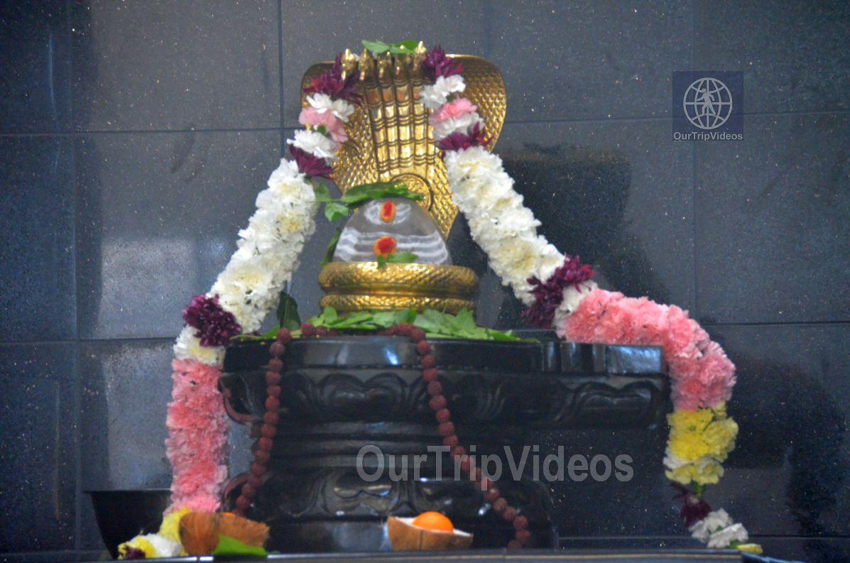 Maha Mandalabhishekam - Sri Panchamukha Hanuman Temple, Dublin, CA, USA - Picture 11 of 25
