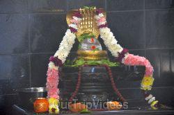 Maha Mandalabhishekam - Sri Panchamukha Hanuman Temple, Dublin, CA, USA - Picture 6