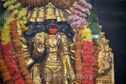 Maha Mandalabhishekam - Sri Panchamukha Hanuman Temple, Dublin, CA, USA - Picture 9