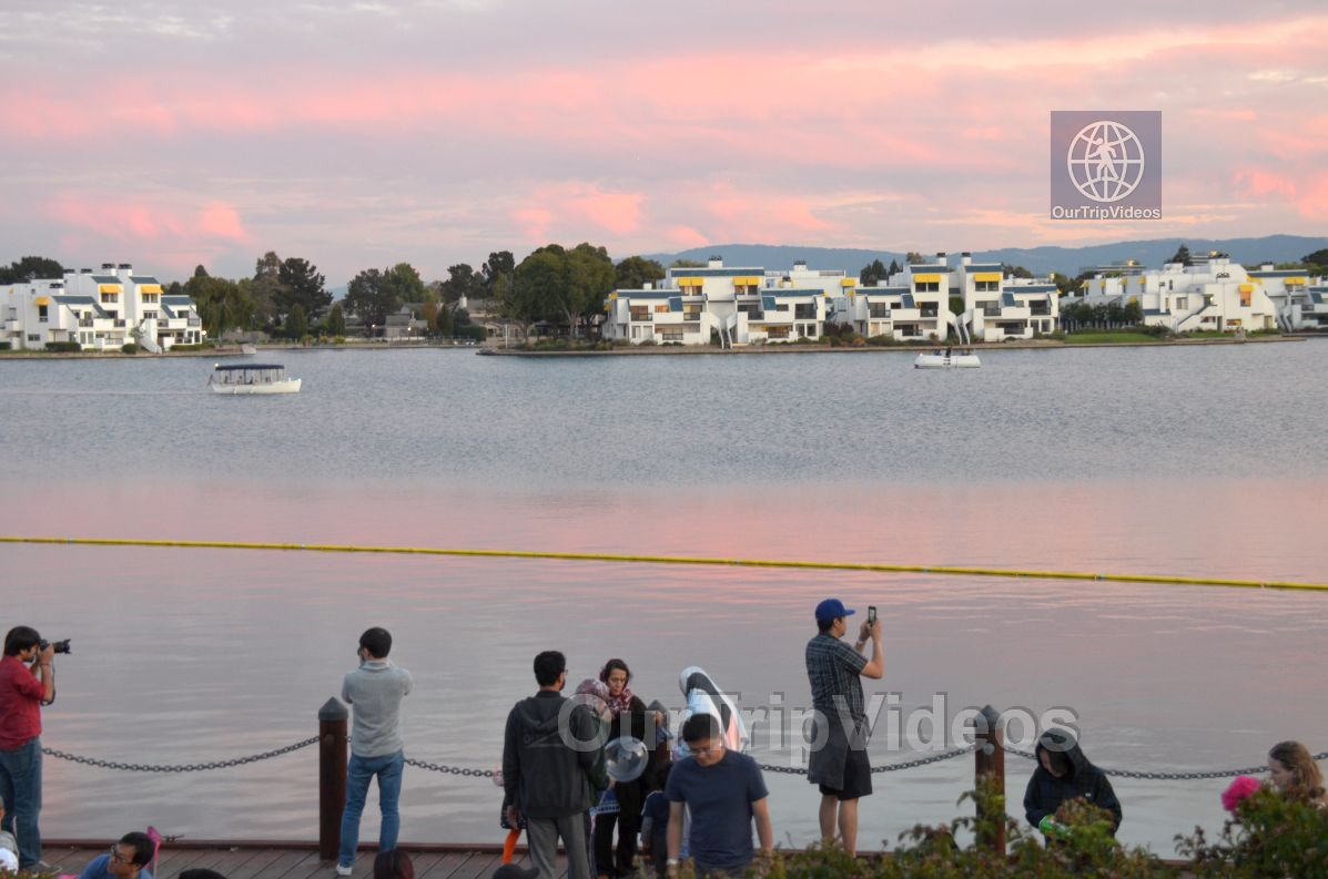 San Francisco(Bay Area) Water Lantern Festival, Foster City, CA, USA - Picture 42 of 50
