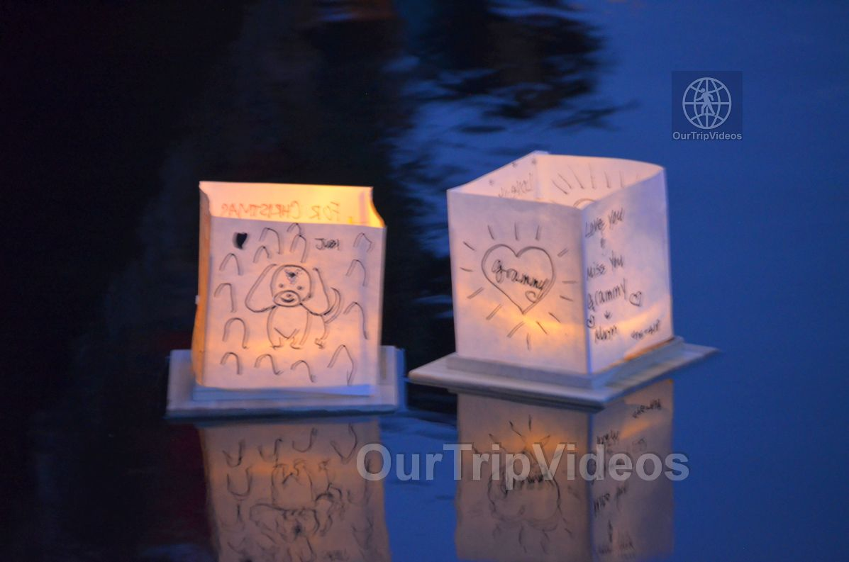 San Francisco(Bay Area) Water Lantern Festival, Foster City, CA, USA - Picture 61 of 75