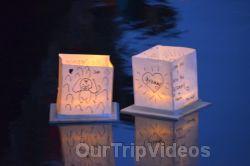 San Francisco(Bay Area) Water Lantern Festival, Foster City, CA, USA - Picture 61