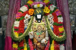 Vaikunta Ekadasi celebrations at SVCC temple, Fremont, CA, USA - Online News Paper RSS -  views