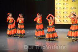 FOG Indian Republic Day Celebration, Santa Clara, CA, USA - Picture 9