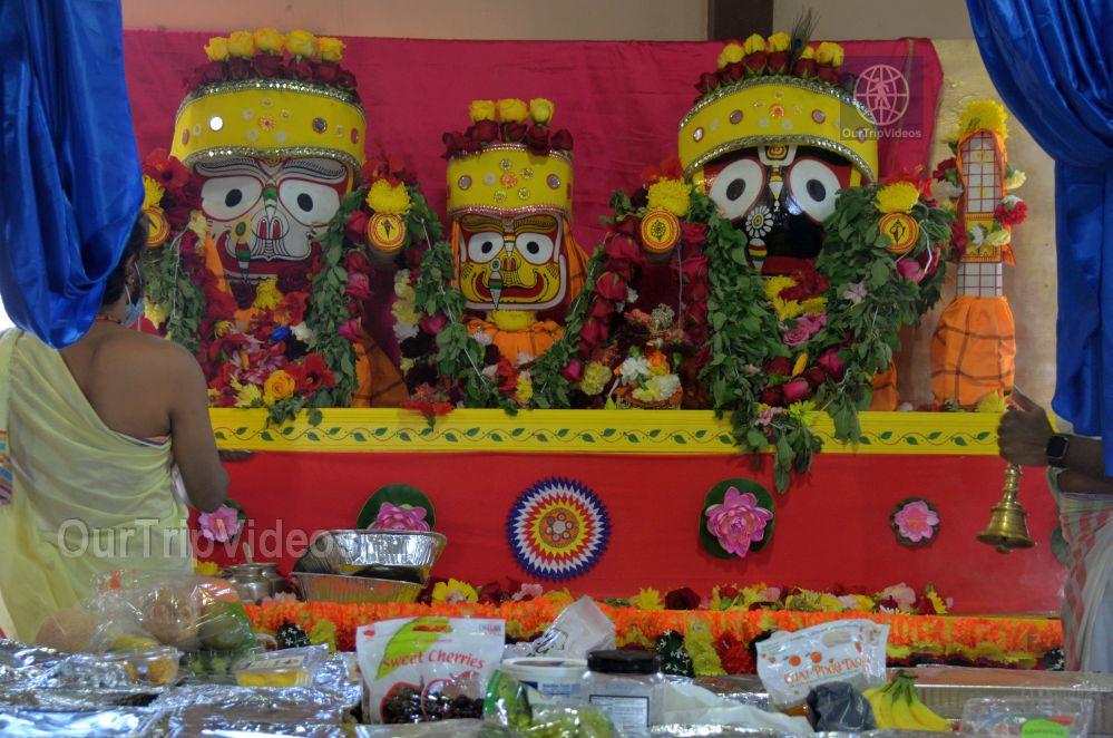 Sri Jagannath Ratha Yatra - Fremont Temple, Fremont, CA, USA - Picture 50 of 50